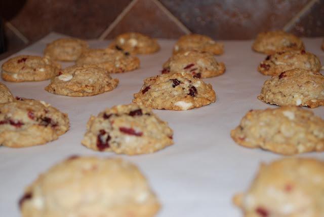 cranberry hootycreek cookies