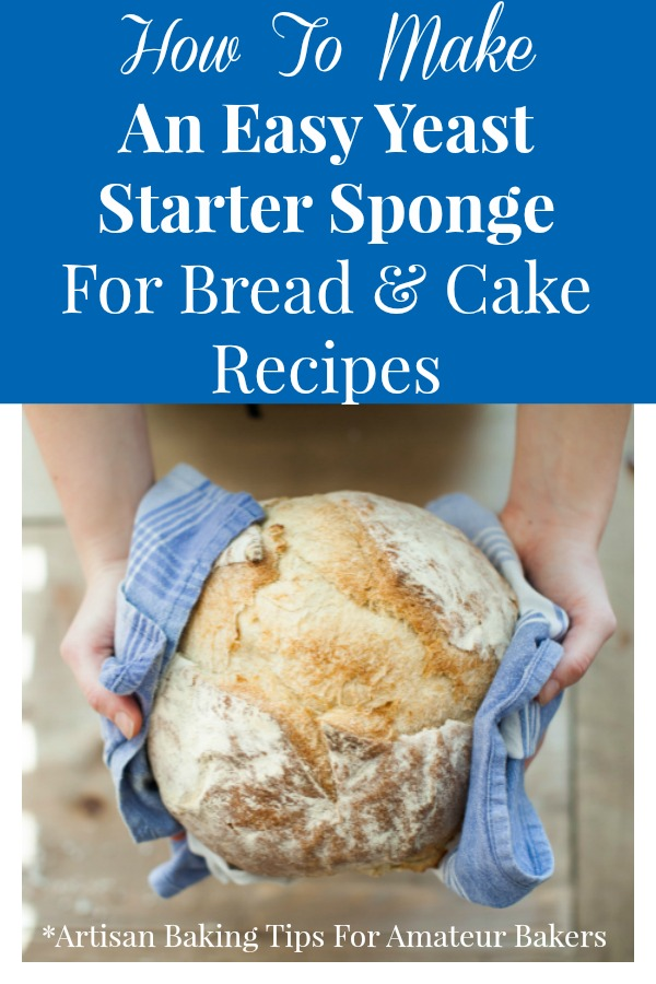 Making a yeast starter sponge from scratch for bread and cake recipes is actually really simple.  Using this yeast starter sponge yields breads and cakes with amazing taste and texture! #bakingtips #yeaststarterrecipe via @Ameecooks