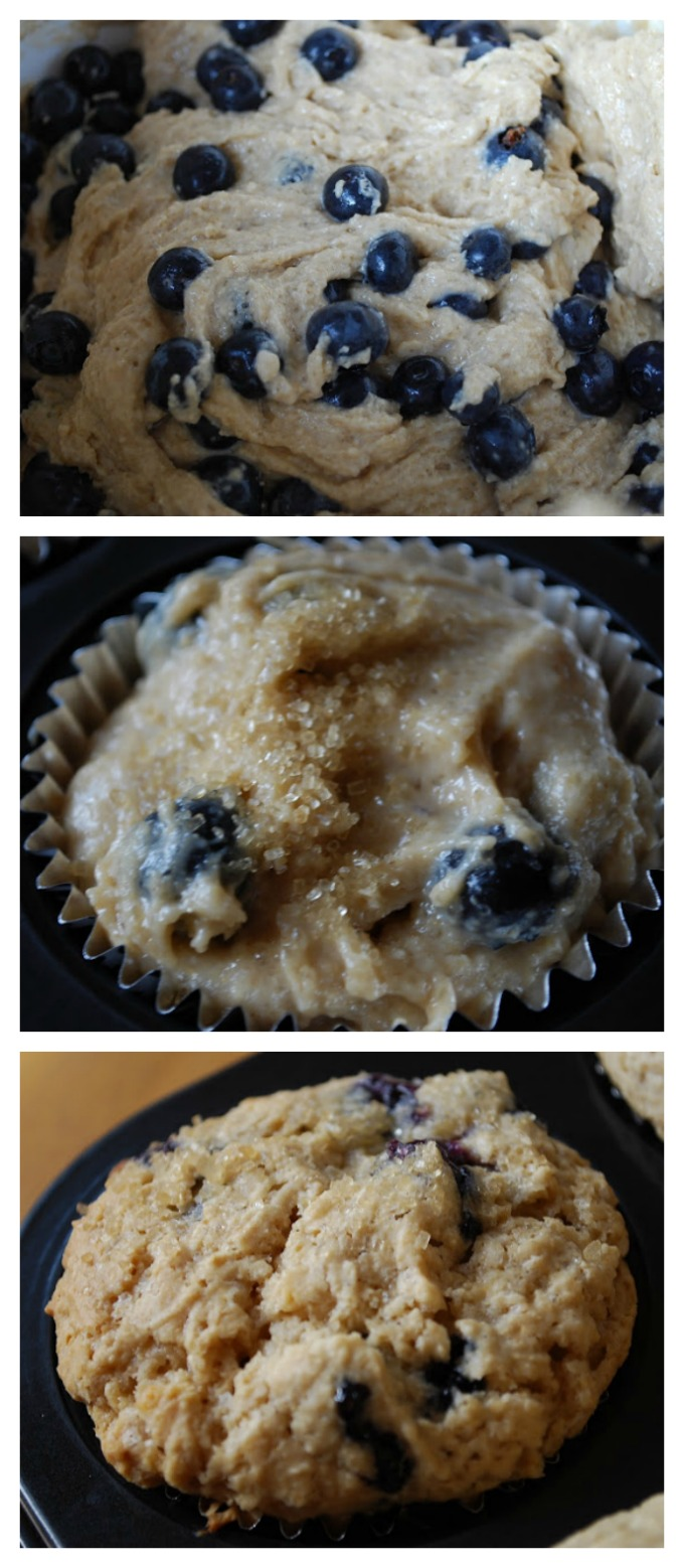Wheat Free Blueberry Muffin collage