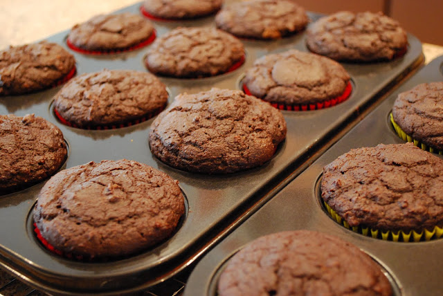 Double Chocolate Muffins baked