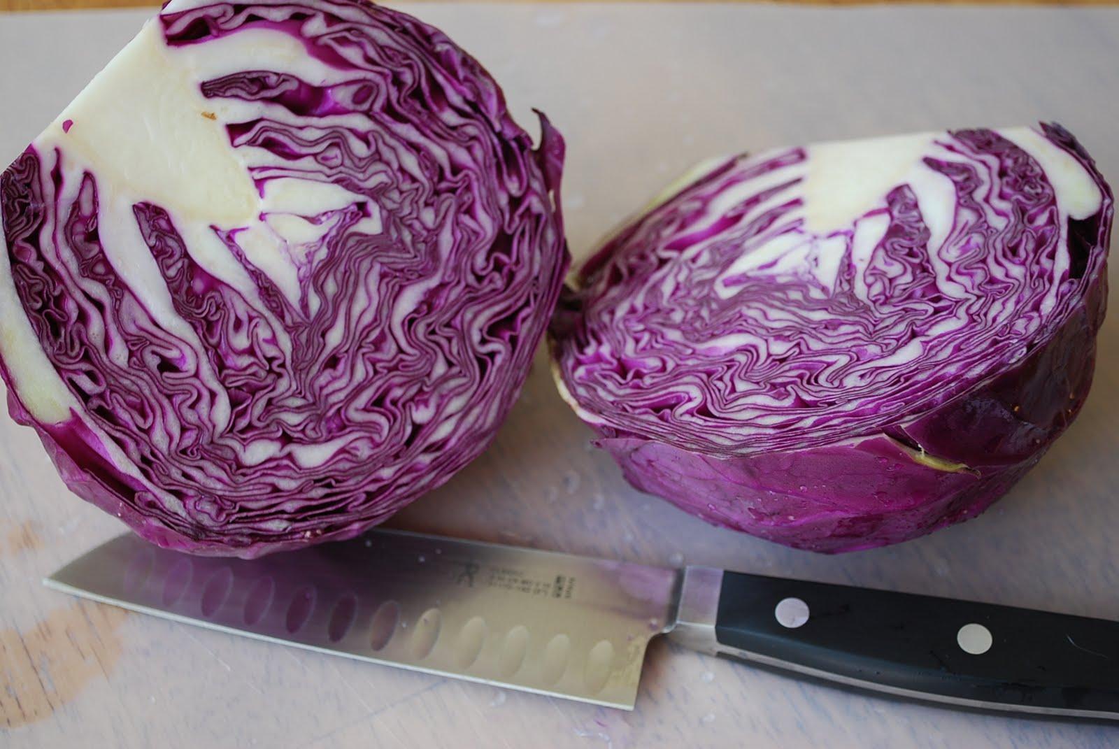 Purple Cabbage Salad Recipe Amee S Savory Dish