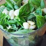 fresh basil and garlic in a food processor