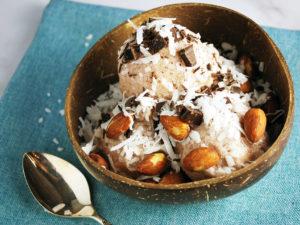 Almond Joy Vitamix Ice Cream