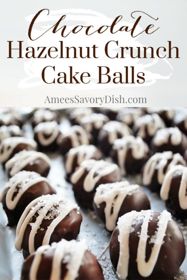 Chocolate Hazelnut Crunch Balls are cake balls made with creamy Nutella, chopped hazelnuts, chocolate cake and dipped in melted chocolate.  via @Ameecooks