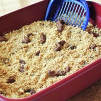 How To Make a Kitty Litter Cake