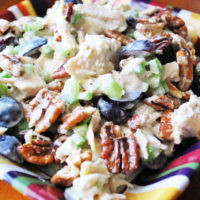 Easy Paleo Chicken Salad