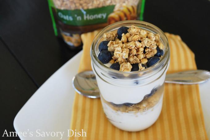 Protein Granola Greek Yogurt Parfait