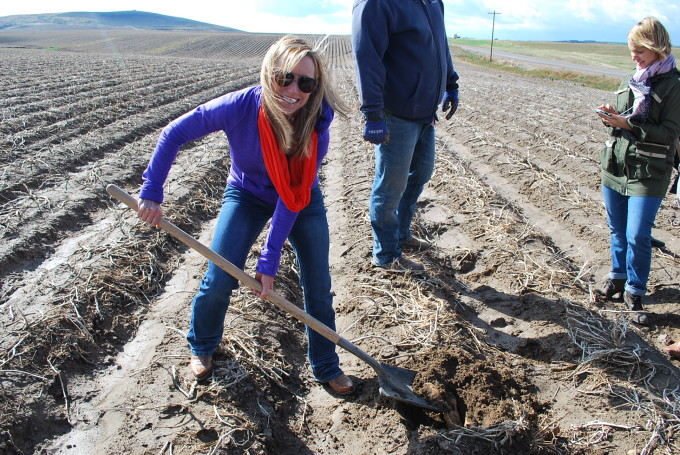 Digging taters in Potato Country, otherwise known as Idaho.