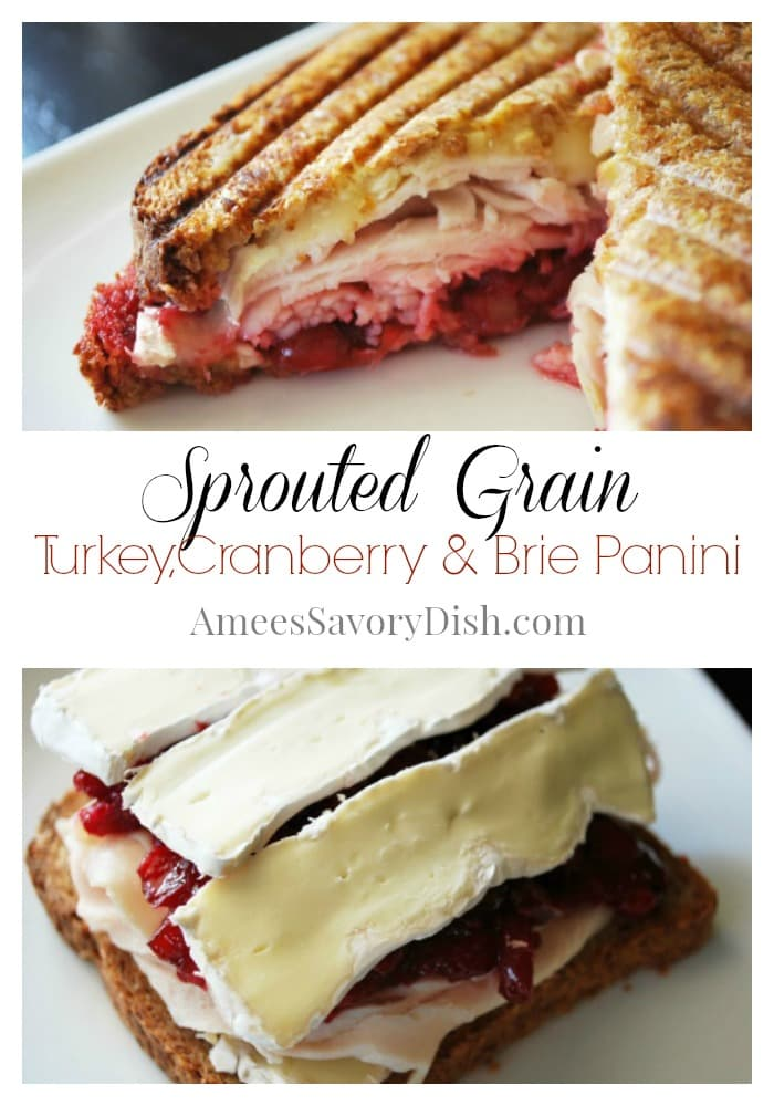 sprouted grain panini