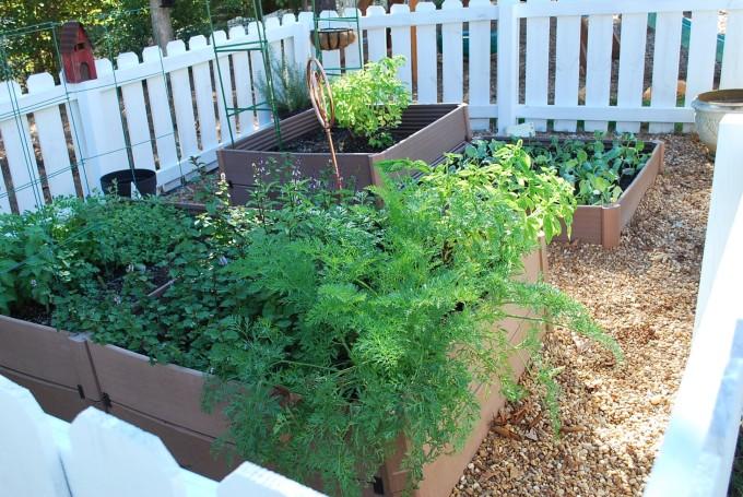 Garden fenced