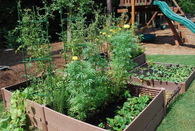 Garden pre-fence