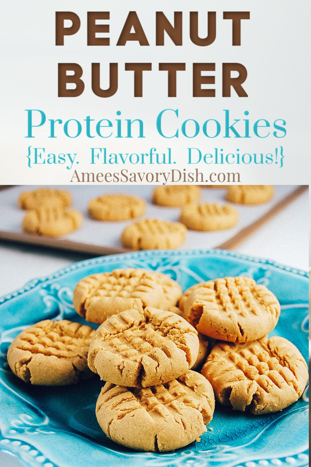 A simple recipe for protein cookies made with peanut butter, egg, maple sugar, and Quest protein powder. Easy and delicious! #proteincookies #questproteindesserts #questproteinrecipes #proteindesserts #healthiercookies via @Ameecooks