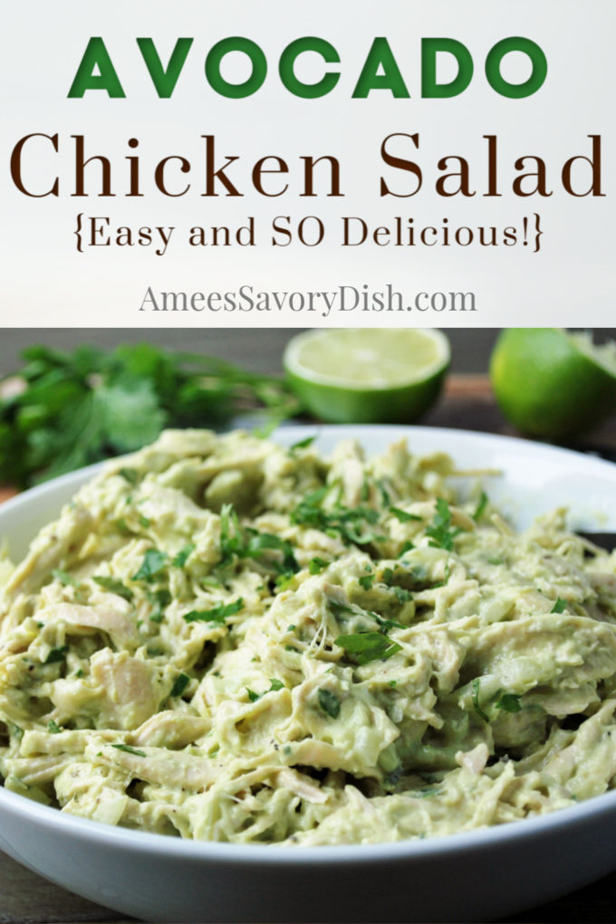 Big bowl of avocado chicken salad with cilantro on top