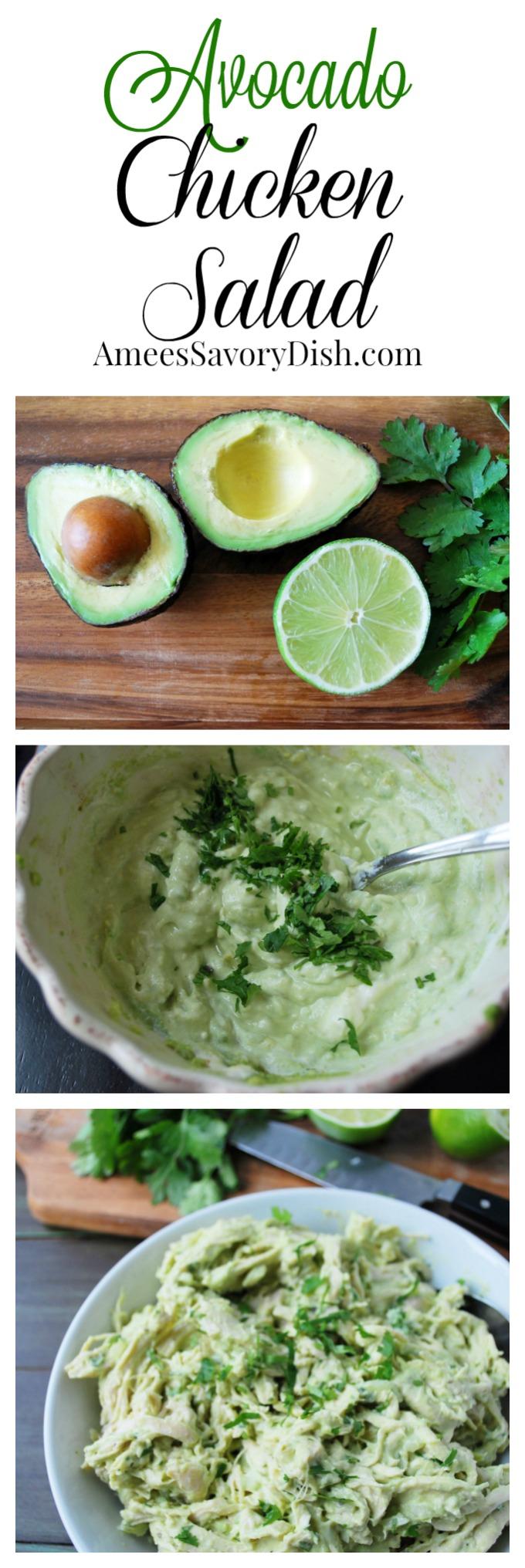 Avocado Chicken Salad Collage