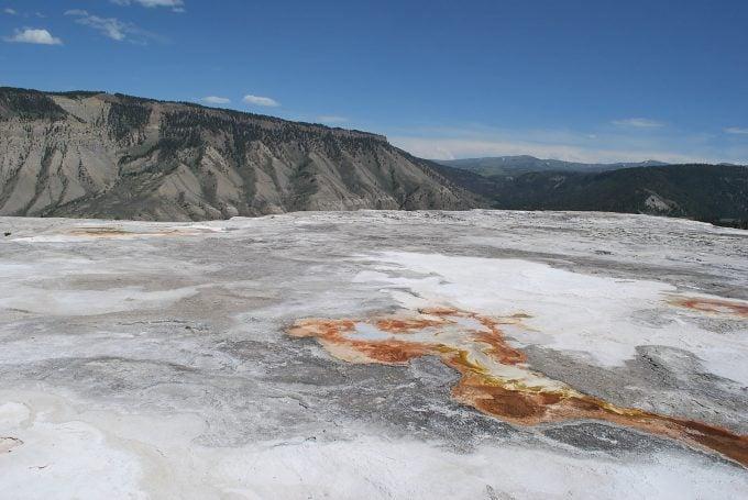Mammoth Hot Springs top