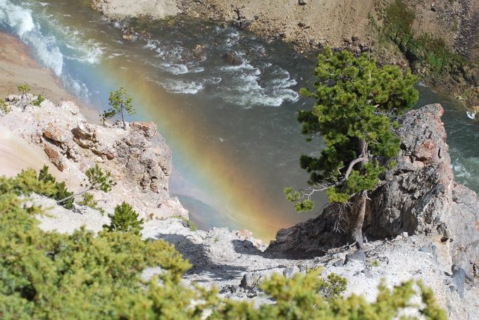 Rainbow at Grand Canyon of Yellowstone