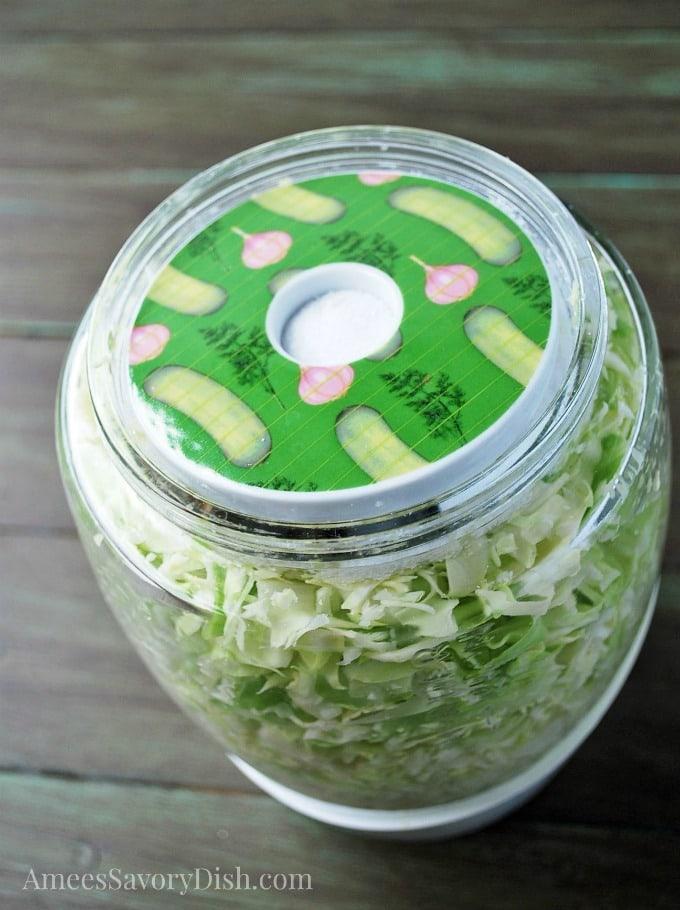 Homemade Sauerkraut step 2 add disc