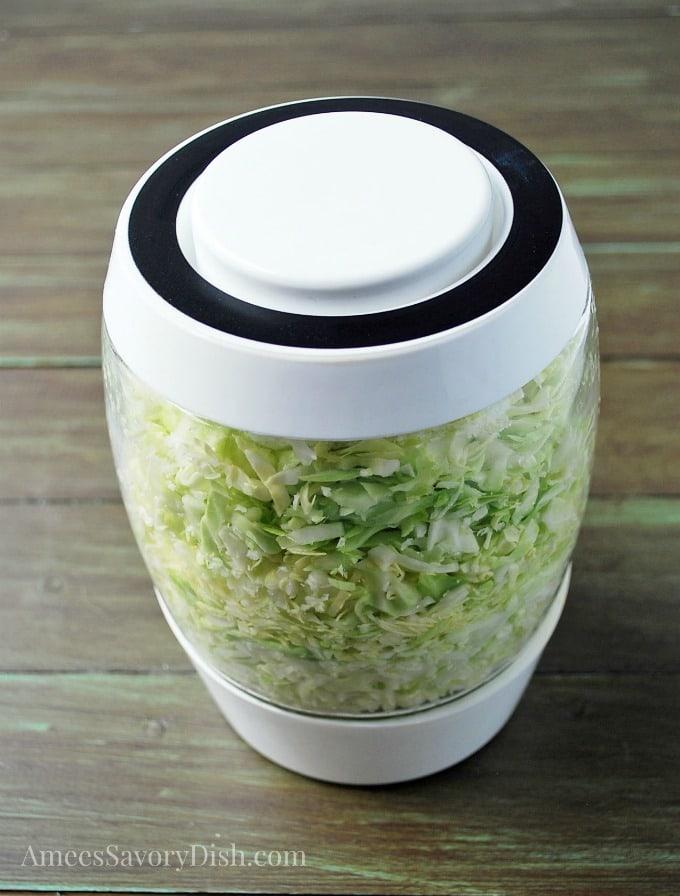 Homemade Sauerkraut step 4 add lid