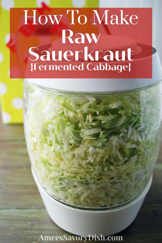 An easy recipe for fermented homemade raw sauerkraut made with only a few simple ingredients using the Mortier Pilon fermentation crock #fermentedfoods #rawsauerkraut #guthealth via @Ameessavorydish