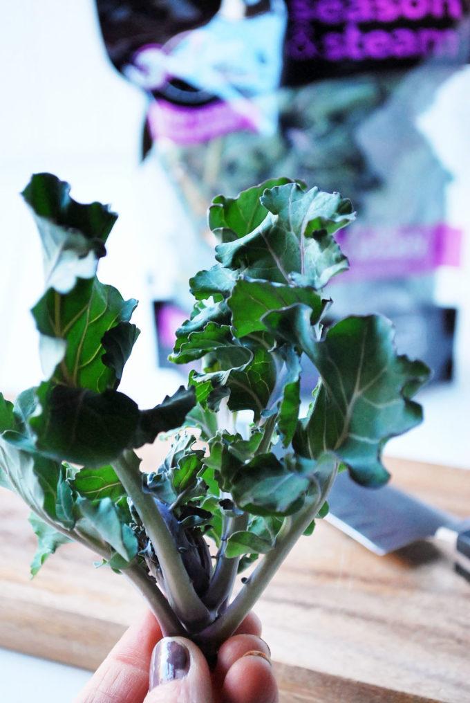A Kalette stalk for kale superfood salad