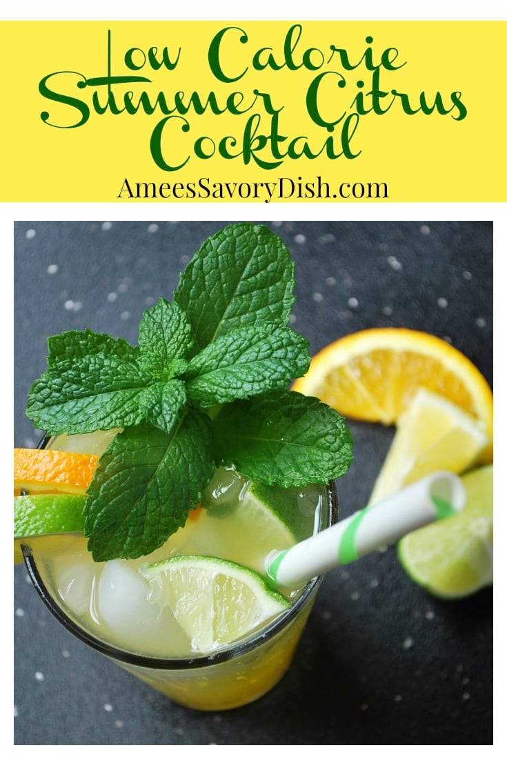 Low Calorie Summer Citrus Cocktail