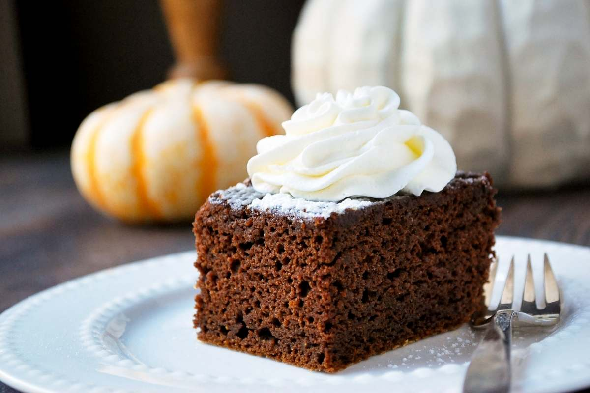 close up photo of a slice of pumpkin chocolate cake topped with whipped cream with a mini pumpkin in the background