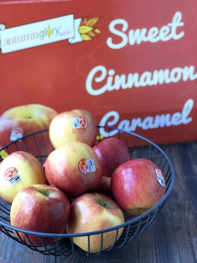 Autumn Glory Apples for Prosciutto Cheddar Apple Wraps