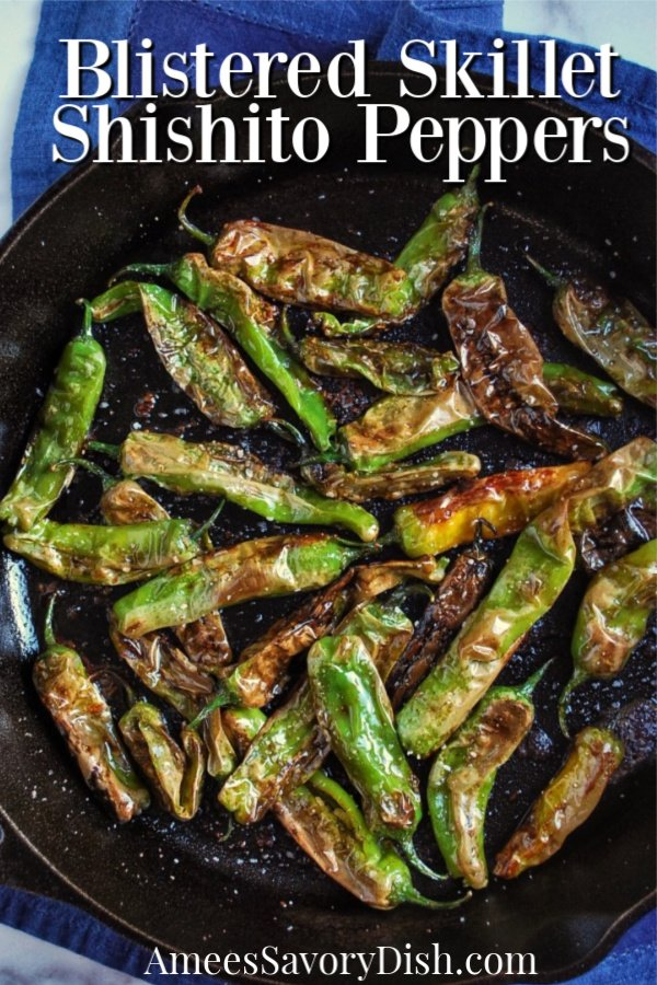 Blistered Shishito peppers are one of my favorite appetizers to order at restaurants and they are incredibly simple to make at home.  These skillet blistered shishito peppers are perfectly seasoned with soy sauce, coarse salt, and freshly squeezed lime.  #blisteredshishitos #shishitopeppers #appetizerrecipe #appetizers via @Ameecooks